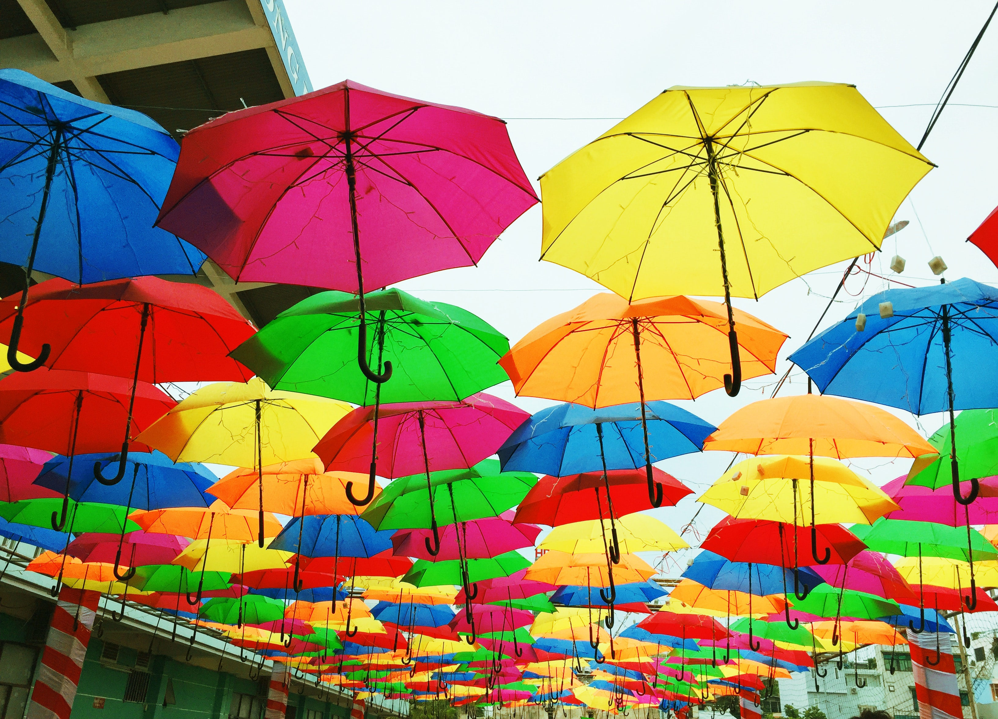 color palette colorful umbrellas 970352